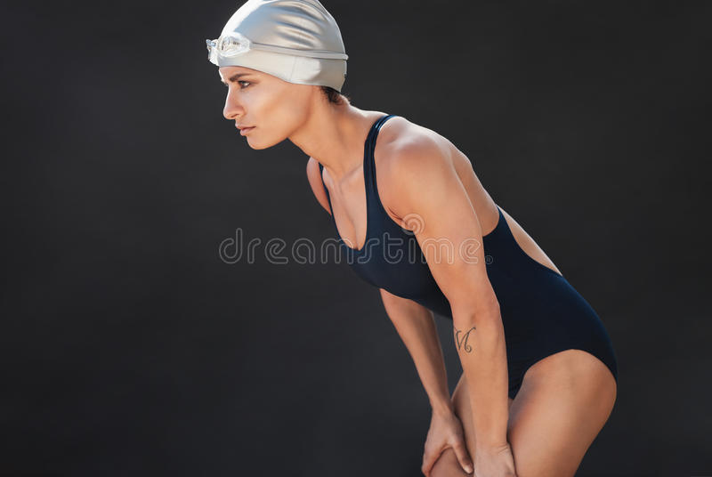 Young sportswoman in swimsuit. Standing on black background. Focused young swimmer ready for swim stock photography
