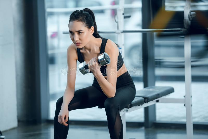 young sporty woman exercising with dumbbell while sitting on workout bench royalty free stock photography