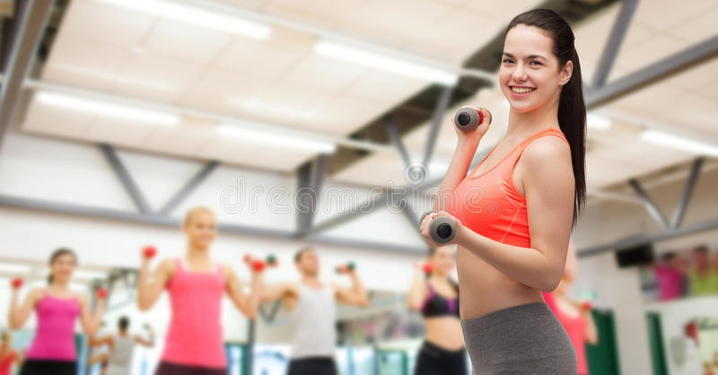 Download Young Sporty Woman With Light Dumbbells Stock Image - Image: 40266001