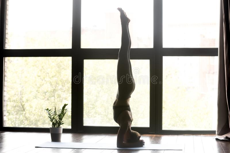 Young sporty woman in salamba sirsasana yoga asana royalty free stock image