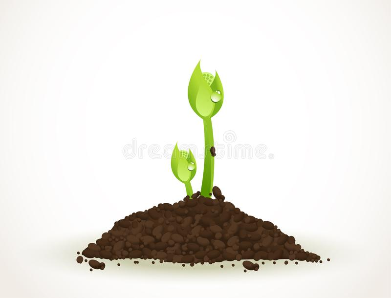 A Young Sprout in Dirt Isolated on White, Eco-friendly abstract background vector stock illustration vector illustration
