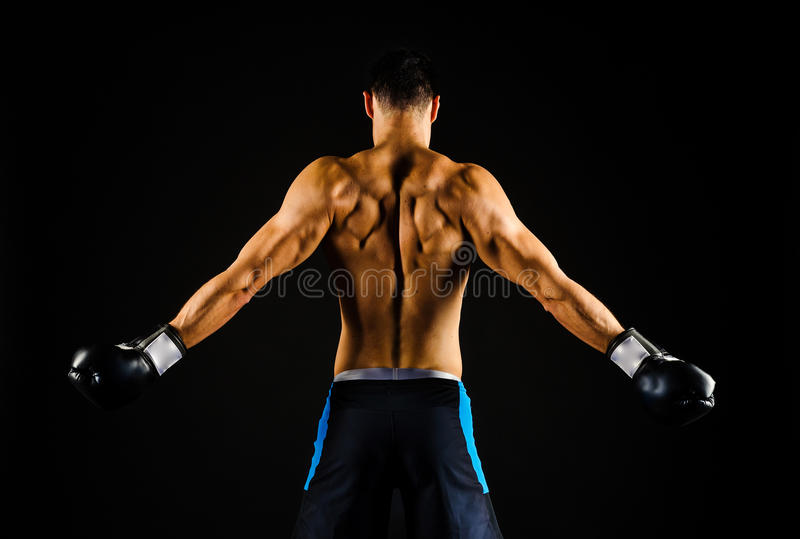 Young strong boxer with boxing gloves. Portrait of a strong determined boxer in shorts and black boxing gloves, black background- back towards camera stock photos