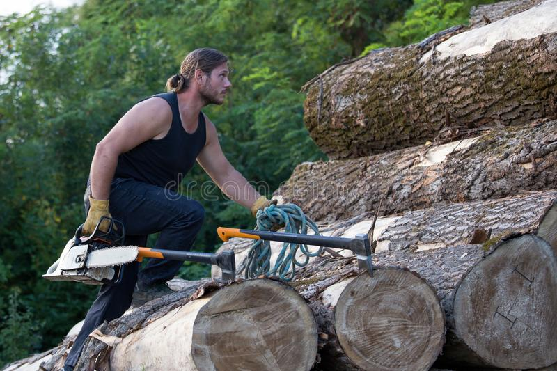 Lumberjack with ax and chainsaw climbing on logs. Young strong lumberjack with chainsaw and ax climbing on wooden logs pile stock photo