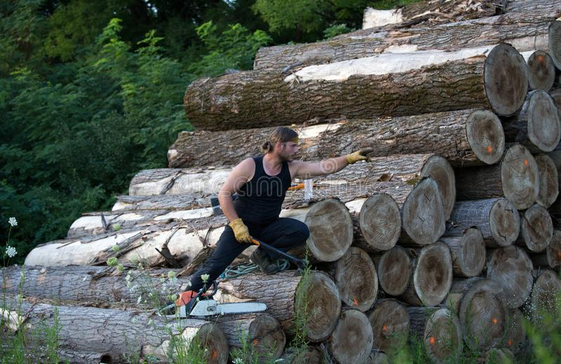 Lumberjack with ax and chainsaw climbing on logs. Young strong lumberjack with chainsaw and ax climbing on wooden logs pile royalty free stock photos