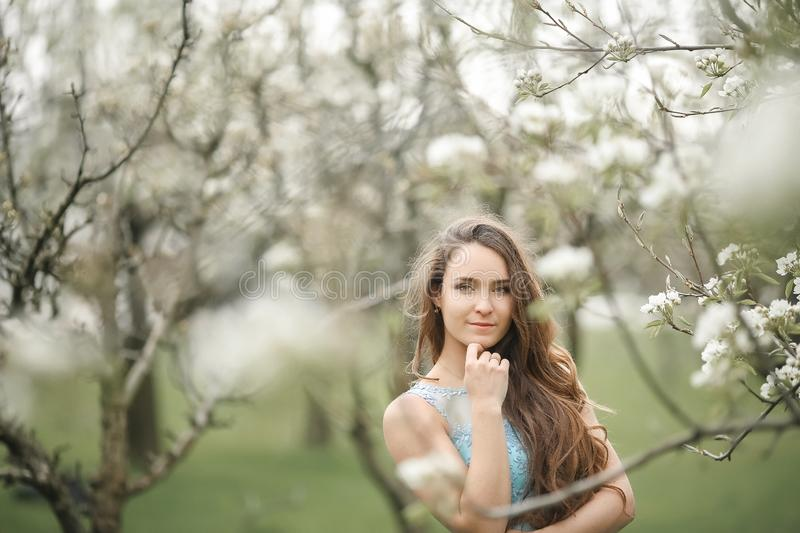 A young stylish model girl in a beautiful fashionable long green dress stands in a summer park near lush flower bushes royalty free stock images