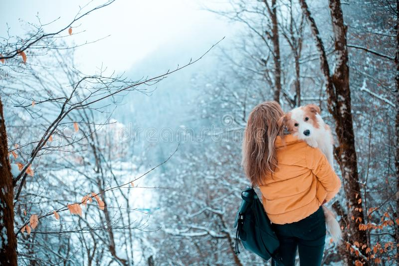 Young stylish travel woman in mountain forest, looking forward, holding a dog, happy positive mood, winter, bohemian stock image