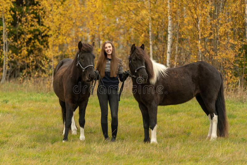 Young Swedish woman in a autumn colored field with her two Icelandic horses royalty free stock photography