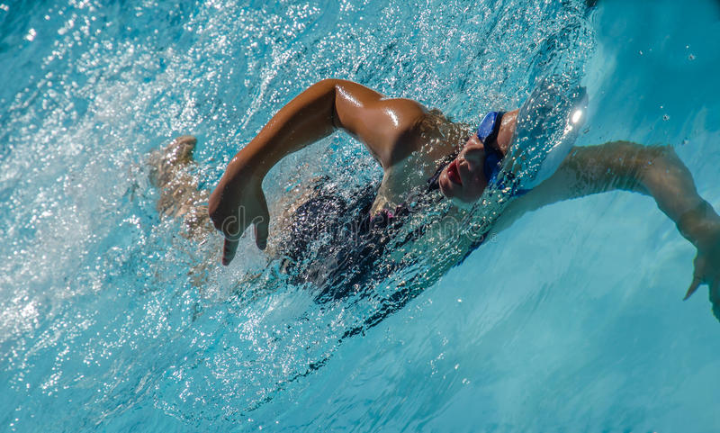 Young swimmer freestyle stock photos
