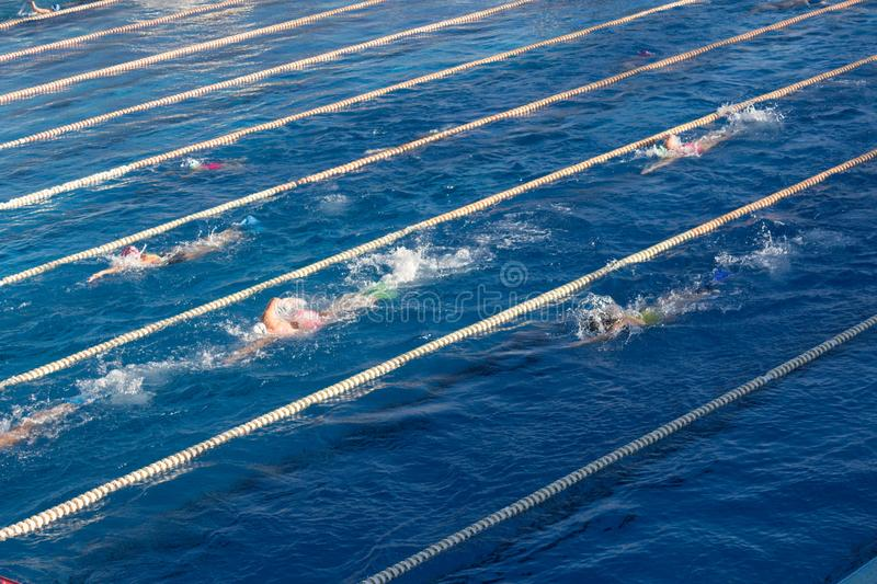 Young swimmers in outdoor swimming pool during freestyle race. stock photo