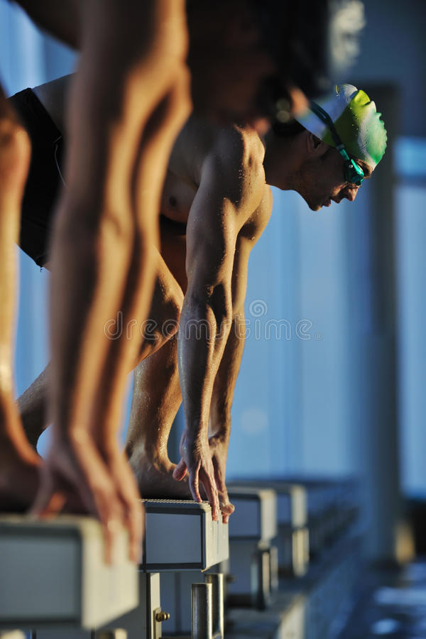 Young swimmmer on swimming start. Start position race concept with fit swimmer on swimming pool royalty free stock images