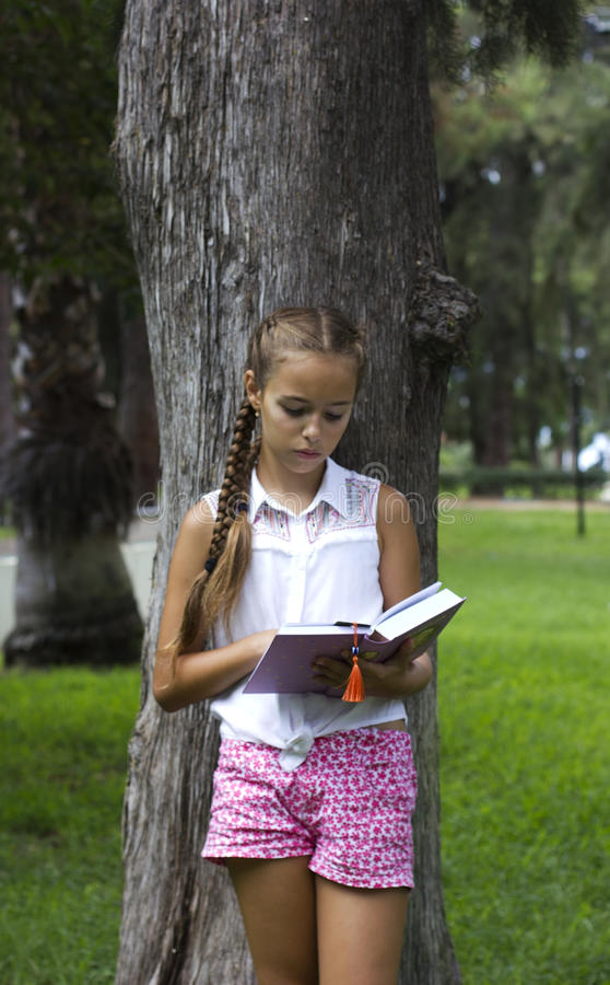 Young teen girl reading book near the pine tree stock photography