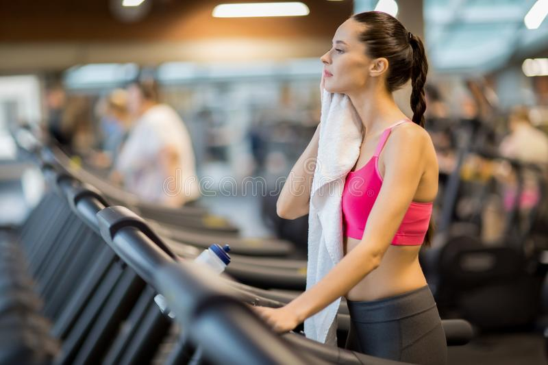 Break between trainings. Young tired woman wiping her sweat with towel and refreshing between trainings on treadmill royalty free stock photography