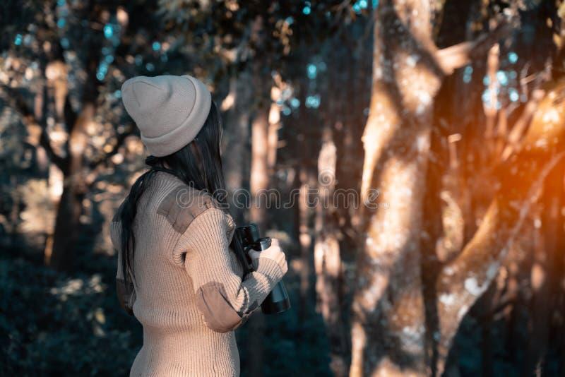 Traveler woman hiker watching through binoculars in forest stock image
