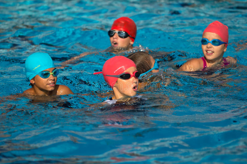 Young triathletes in the water. royalty free stock photo