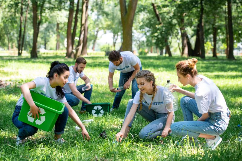Young volunteers cleaning green. Park together stock image