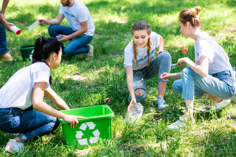 Young volunteers cleaning park. With recycling boxes royalty free stock images
