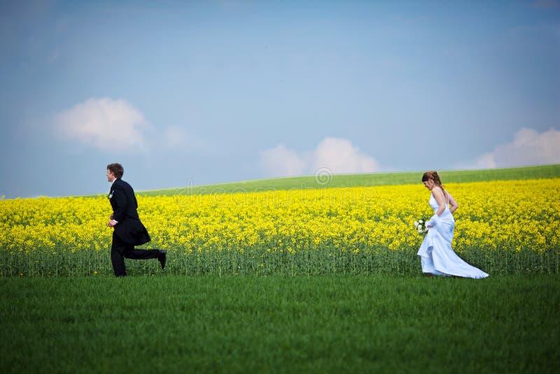 Download Young Wedding Couple Stock Photo - Image: 17847430