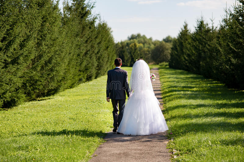 Young wedding couple walking together at the alley. Back view stock image