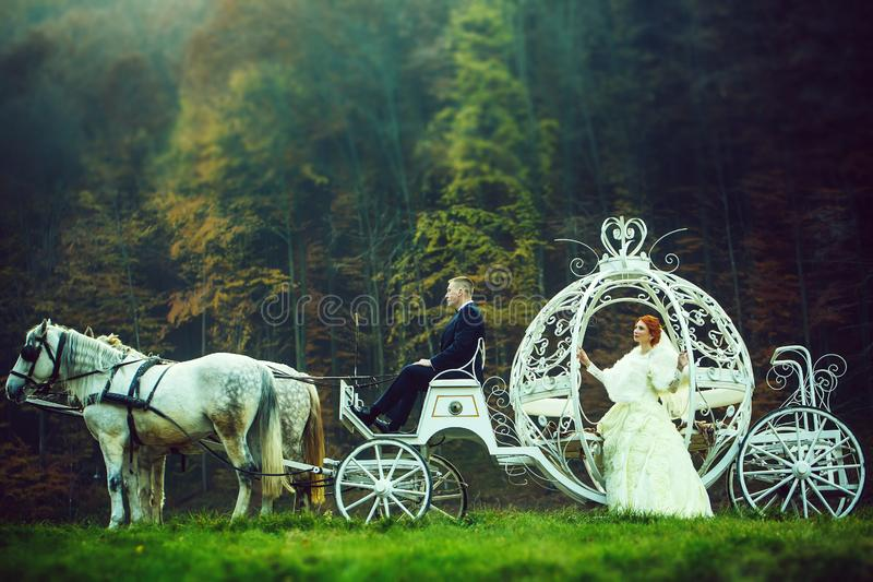 Wedding couple in carriage. Young wedding romantic couple of bride in white dress and bridegroom in suit in cinderella carriage with horses in deep green forest royalty free stock photo