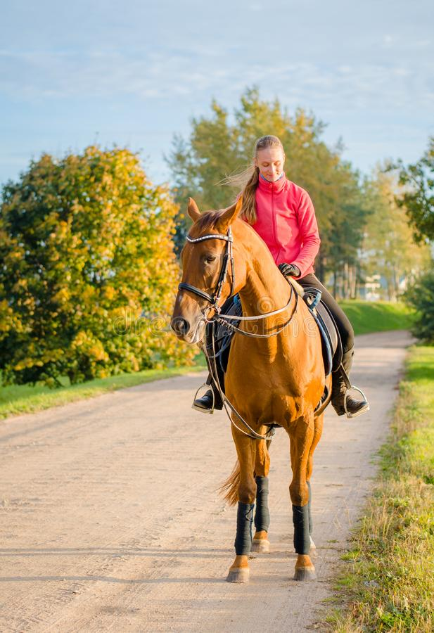 Free Young Woman And Dressage Horse On The Road Royalty Free Stock Photography - 160732577