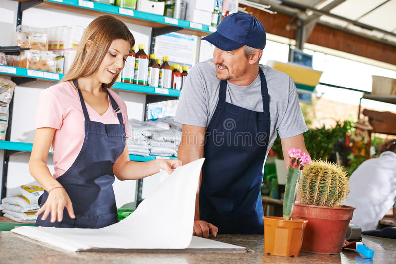Young woman as gardener trainee. Young women as gardener trainee in a nursery shop royalty free stock images