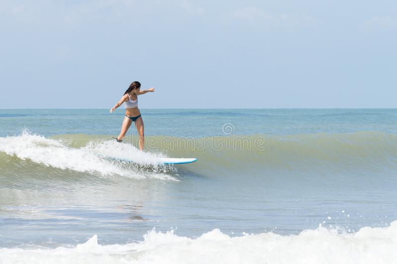 Young woman balancing on a surfboard royalty free stock photos