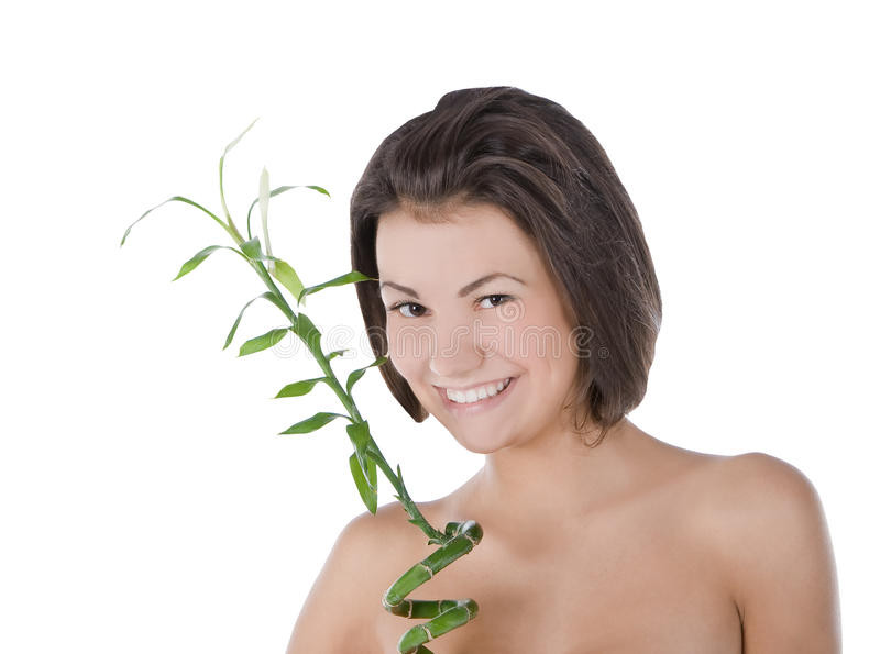 Young woman with a bamboo plant over white royalty free stock images