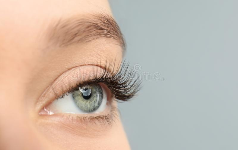 Young woman with beautiful long eyelashes on gray background, closeup royalty free stock image