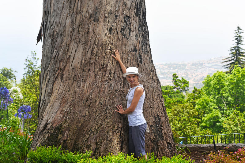 Young woman with big tree stock photo