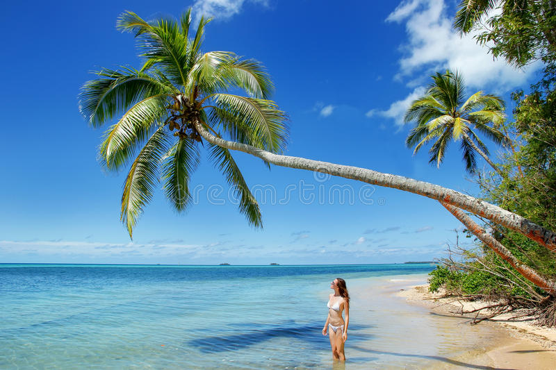 Young woman in bikini standing under palm tree at Makaha'a islan royalty free stock photos
