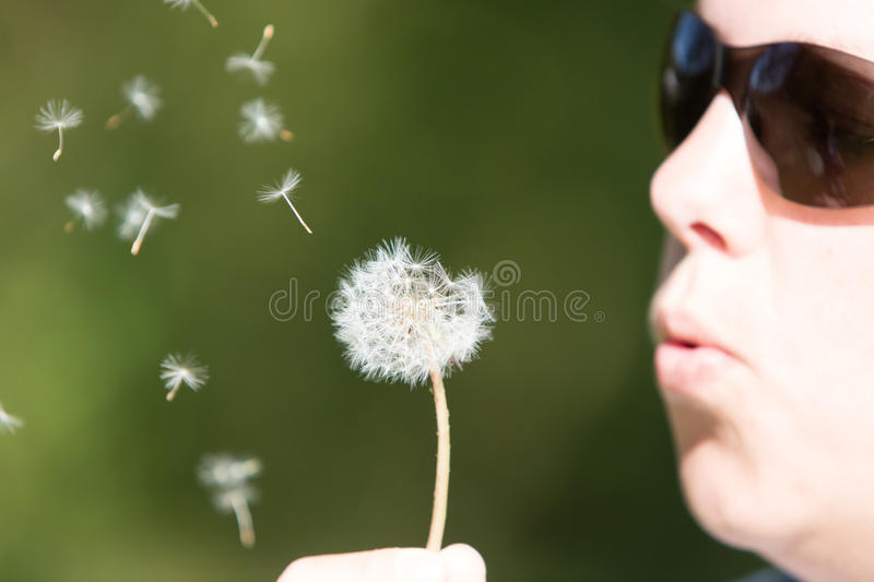 Young woman blowing to the dandelion, selective focus stock photography