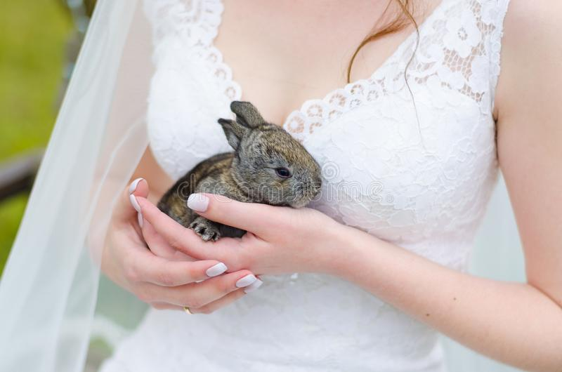 Young woman bride smiling and holding cute rabbit over park summer nature outdoor. White wedding dress, green background stock photo