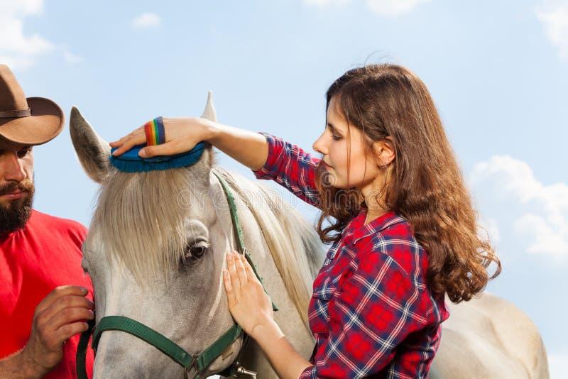 Young woman brushing her beautiful white horse stock photo