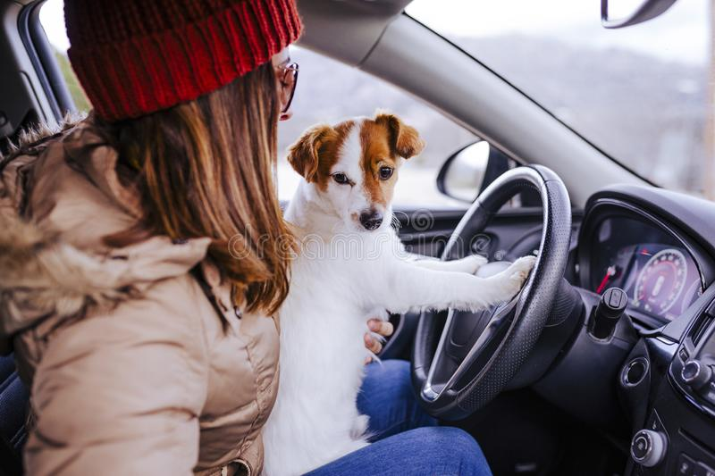 young woman in a car with her cute small jack russell dog. winter or autumn season royalty free stock images