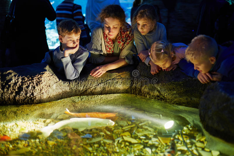 Young woman and children look at fishes in enlighted pool stock photo