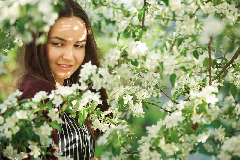Young woman with clean skin near a blooming apple tree. gentle portrait of girl in spring park. Spring shot of cute person royalty free stock photo