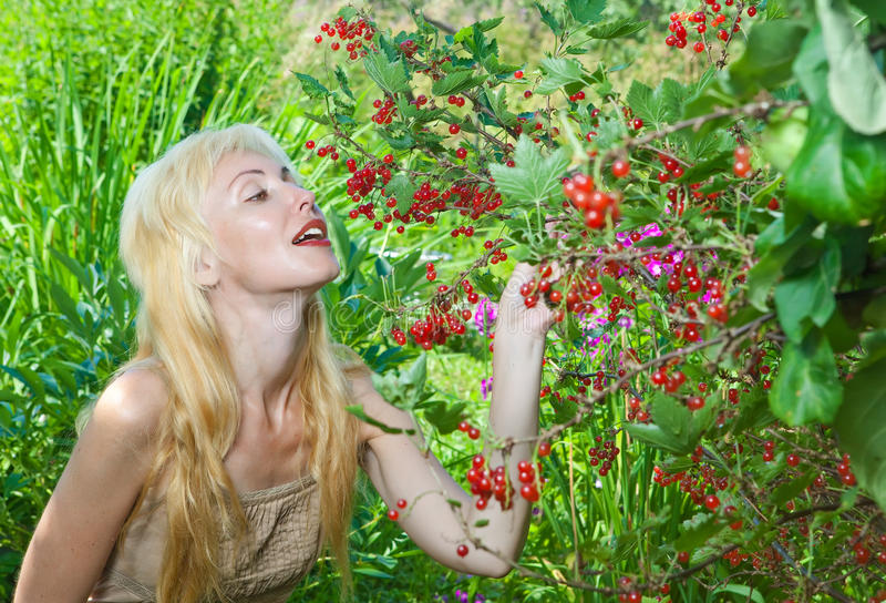 The young woman collects a berry in a garden royalty free stock photo