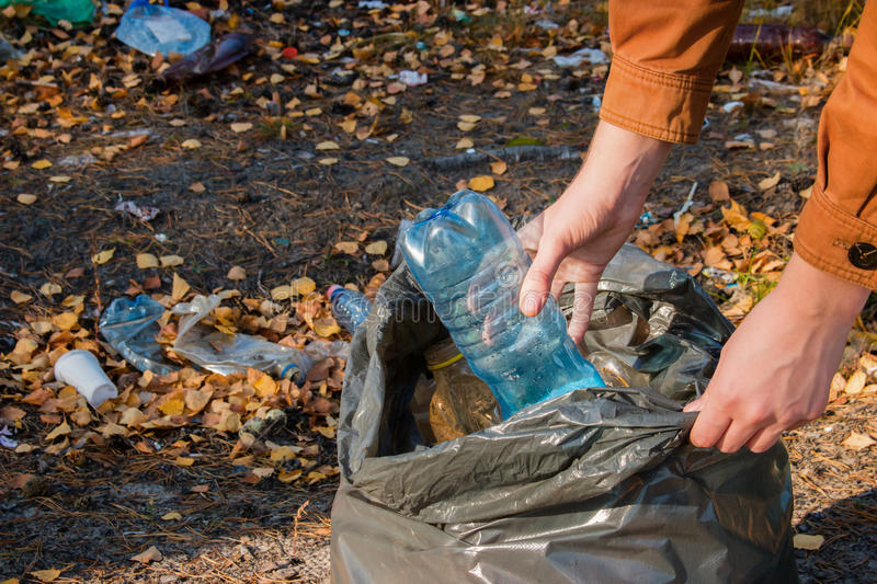Young woman collects garbage stock photo