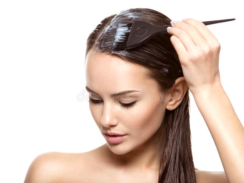 Young woman  coloring hair with brush royalty free stock image