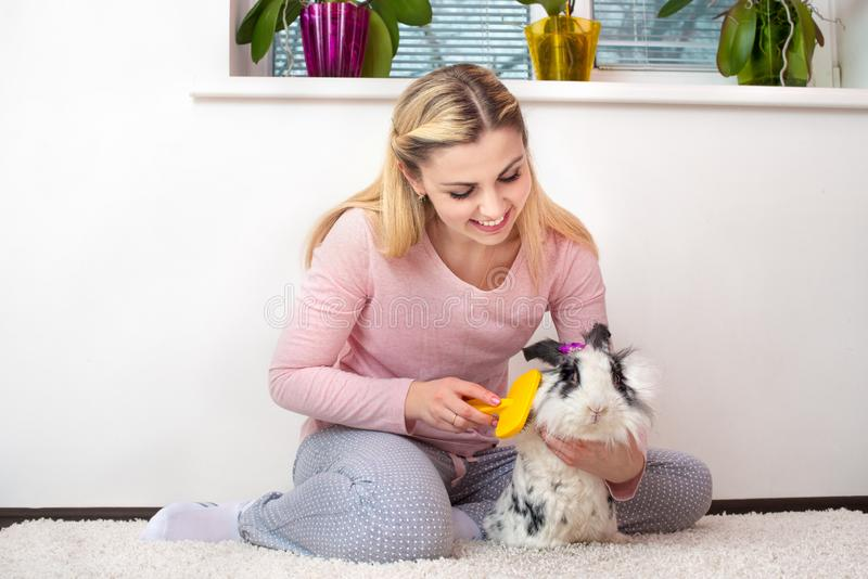 A young woman is combing her rabbit.Lovely pets. royalty free stock images