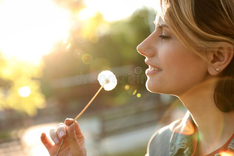 Young woman with dandelion in park on sunny day. Allergy free royalty free stock photos