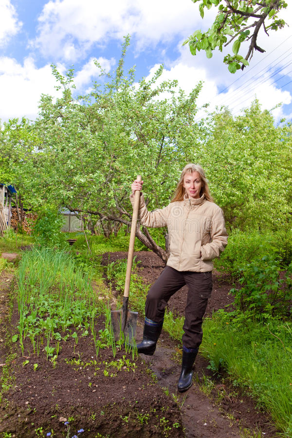 The Young Woman Digs Up A Garden-bed Stock Photography