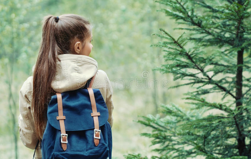 Young woman discovering nature in the forest, travel lifestyle c. Young woman discovering nature in the forest environment, travel lifestyle concept royalty free stock photos
