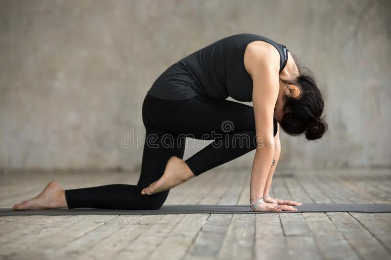 Young woman doing Knee to Forehead curl exercise. Young woman practicing yoga, doing Knee to Forehead curl exercise, Bird dog pose, working out, wearing stock photos