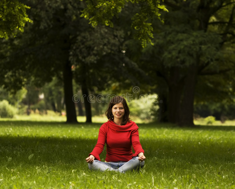 Download Young woman doing yoga stock photo. Image of freedom, fitness - 8510670