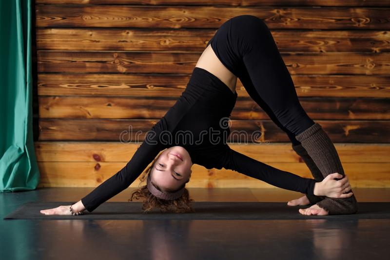 Young woman doing yoga exercise, Revolved Downward Facing Dog Posture royalty free stock images