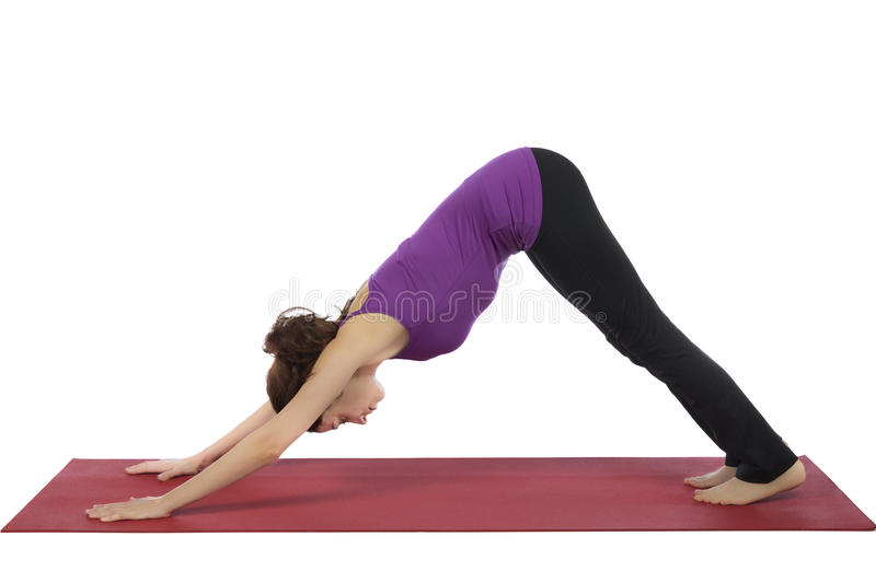 Young woman in Downward Facing Dog Pose. Young woman is doing downward facing dog pose in yoga royalty free stock photos