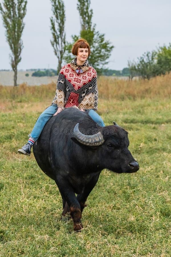 Woman and big black buffalo royalty free stock photos
