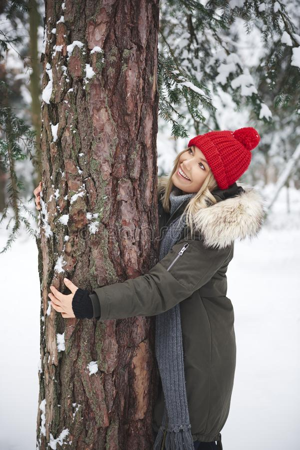 Woman embracing tree in the forest stock images
