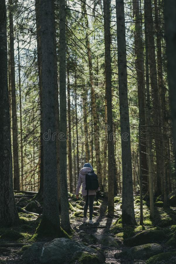 young woman enjoying nature trails stock image